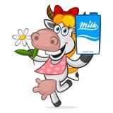 拿着纸盒牛奶的快乐的母牛 免版税库存照片