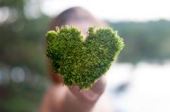 拿着绿色心形的树爱自然的手拯救世界愈合世界环境保存 免版税图库摄影