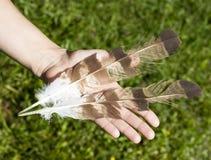 拿着羽毛的手 免版税图库摄影