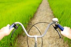 拿着老自行车的把手在小道路的手在米fie 免版税库存照片