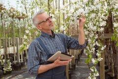 拿着花的花匠 新的颜色品种 免版税库存照片