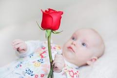 拿着花的花束逗人喜爱的女婴起来了 库存图片