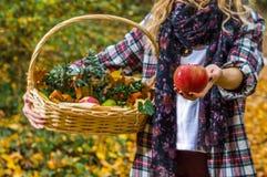 拿着苹果和篮子的女孩 免版税库存照片