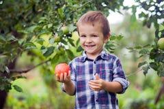 拿着苹果的小男孩 免版税库存照片