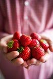 拿着草莓的妇女 库存图片