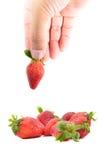 拿着草莓的手 免版税库存照片