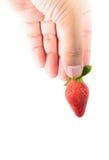 拿着草莓的手 免版税图库摄影