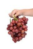 拿着葡萄 免版税库存图片