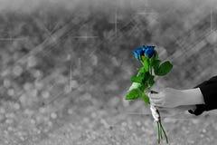 拿着蓝色玫瑰的手在模糊灰色的光和bokeh开花 库存图片