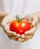 拿着蕃茄的女孩 图库摄影