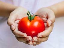 拿着蕃茄的女孩  免版税图库摄影