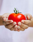 拿着蕃茄的女孩 免版税库存图片