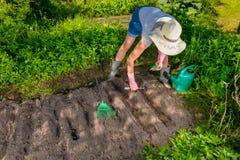 拿着袋子种子和园艺工具的妇女 免版税库存照片