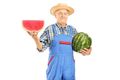 拿着西瓜和切片的粗蓝布工装的微笑的农夫 免版税库存图片