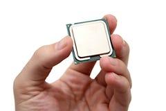 拿着计算机处理单位CPU 免版税库存图片