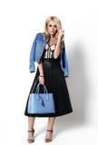 拿着购物袋的一名典雅和时髦的妇女的被隔绝的时尚画象 库存图片
