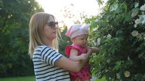拿着逗人喜爱的婴儿女孩的年轻母亲和在公园显示她的白色灌木花