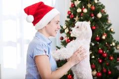 拿着逗人喜爱的狗的可爱的女孩和在圣诞节假日享用 库存照片