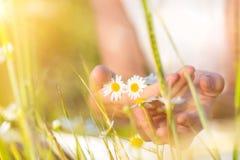 拿着钉子妇女的美丽的花 免版税库存图片