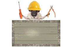 拿着钳子和螺丝刀在空白的老木标志后的哈巴狗狗,隔绝在白色背景 免版税库存照片