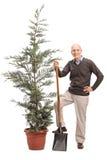 拿着铁锹和摆在树的老人 库存图片