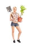 拿着铁锹和植物的Wman 库存照片