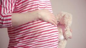 拿着长毛绒玩具和接触她的腹部用手的孕妇 影视素材