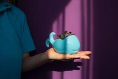 拿着陶瓷罐的女孩 免版税库存照片