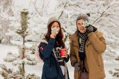 拿着雪花和微笑在公园的美好的国际夫妇在雪的冬天 免版税库存照片