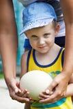 拿着驼鸟eggj的小男孩 免版税库存照片