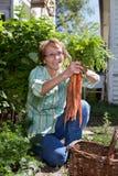 拿着高级妇女的红萝卜 免版税库存照片