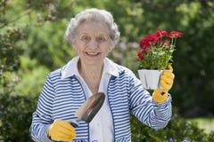 拿着高级微笑的妇女的花 库存图片