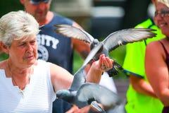 拿着鸽子的妇女 免版税库存照片