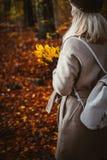 拿着黄色秋天槭树的花束妇女在她手套的手离开 用金黄叶子lightend报道的地面 免版税库存图片