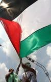 拿着巴勒斯坦巨人glag的抗议者 免版税库存照片