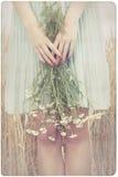 拿着延命菊花的妇女 图库摄影