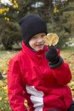 拿着黄色叶子的男孩 库存照片
