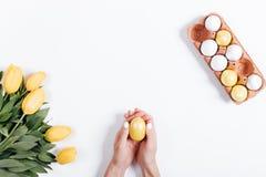 拿着黄色复活节彩蛋的女性手顶视图在郁金香附近 库存图片