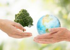 拿着绿色橡树和地球行星的手 免版税库存图片