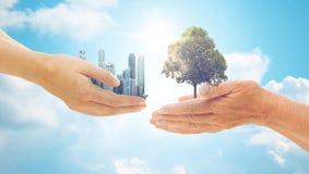 拿着绿色橡树和城市大厦的手 免版税库存图片