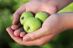 拿着绿色苹果的手 免版税库存图片