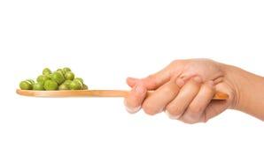 拿着绿豆的女性手IV 免版税库存图片