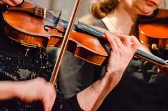 弹小提琴的音乐家在音乐会 图库摄影