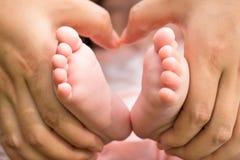 拿着baby& x27的母亲; s脚 免版税库存照片