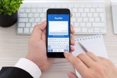 拿着iPhone 6空间的商人灰色与服务PayPal 免版税库存图片