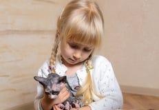 拿着sphynx小猫的小白肤金发的女孩 库存照片