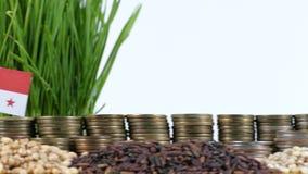 巴拿马沙文主义情绪与堆金钱硬币和堆麦子 股票视频