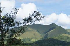 巴拿马风景-绿色山 库存照片