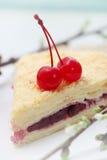 拿破仑蛋糕,特写镜头 图库摄影