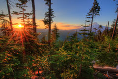挂接敞篷美丽的景色在俄勒冈,美国。 免版税库存照片